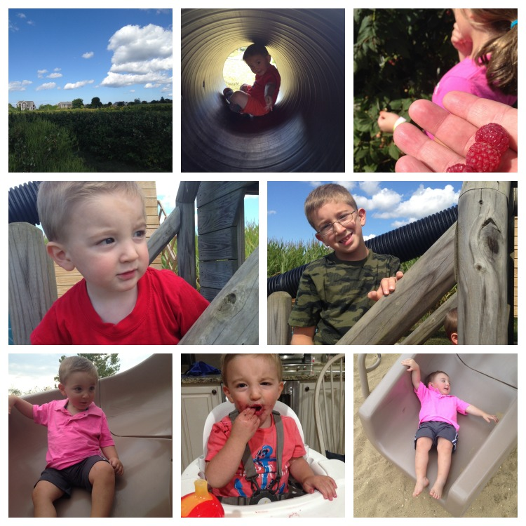 Fav Fam Farm 2 9-13-14 Collage
