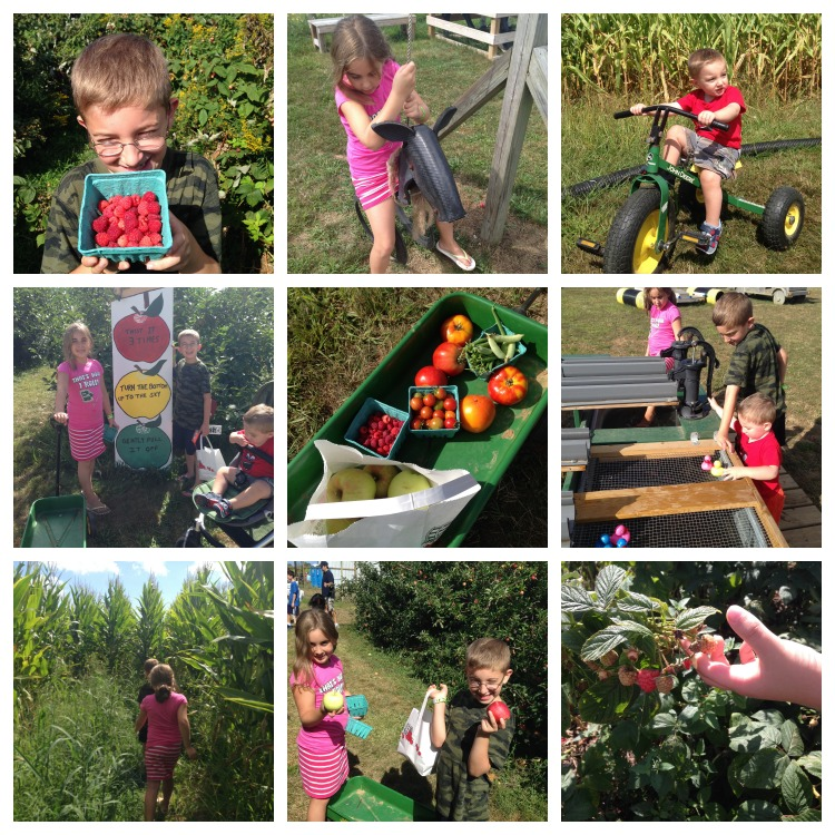 Fav Fam Farm 9-13-14 Collage