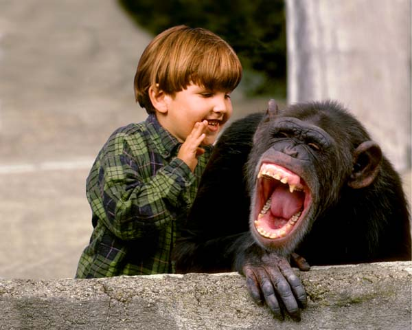 boy and monkey laughing10