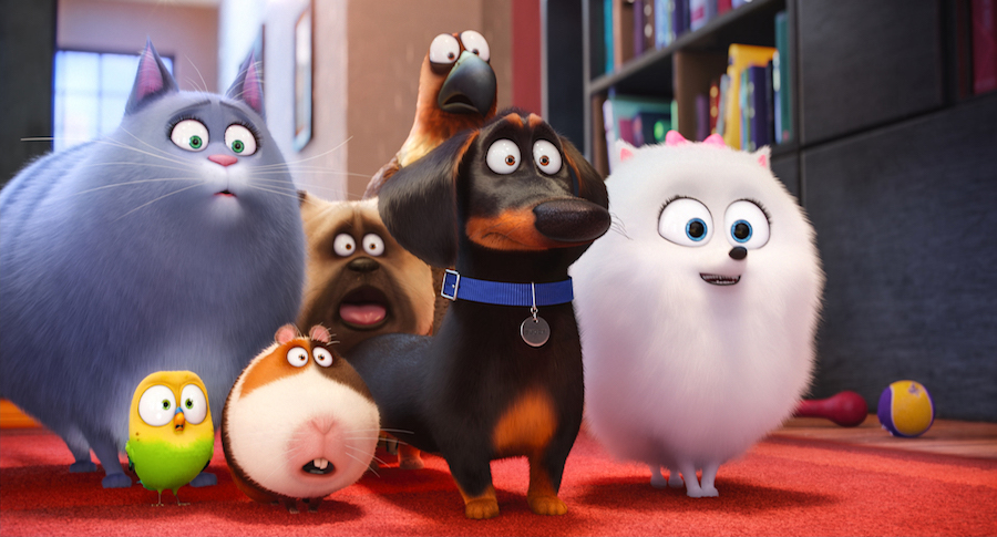 life-of-pets