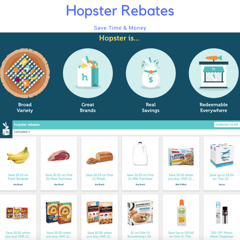 Save Time And Money With Hopster Guy And The Blog
