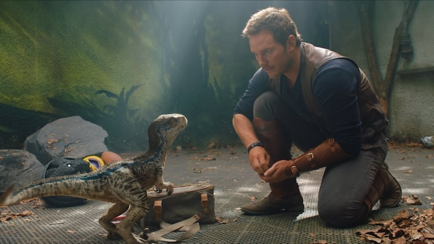 Jurassic World Fallen Kingdom Pratt and baby dino