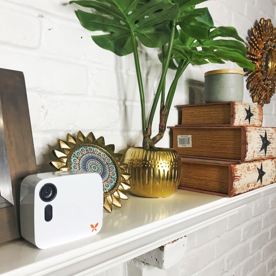 Ooma Butterfleye on shelf