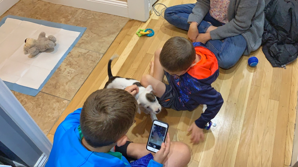 kids playing with dog and phone - hotspot shield
