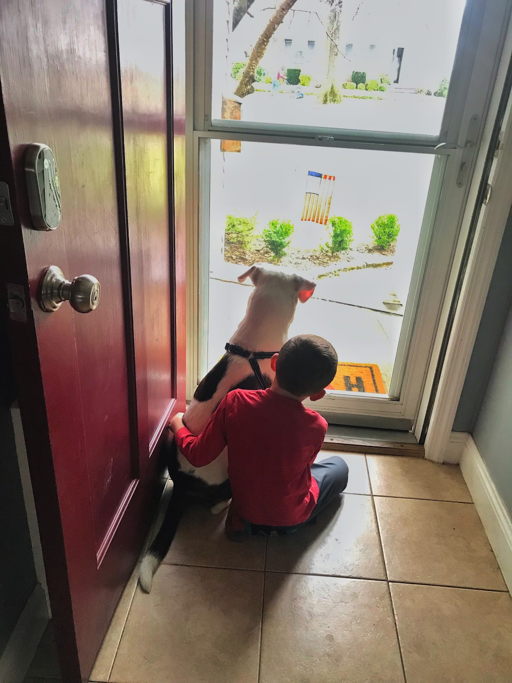 boy with dog looking out door